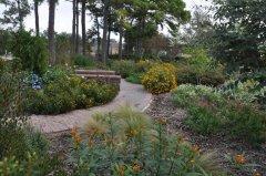 Butterfly-Hummingbird-Garden-in-Spring-2.jpg