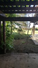White-Oak-Conference-Center-patio.jpg