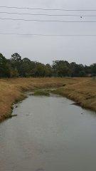 vogel-creek-1.jpg