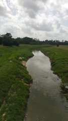 vogel-creek-3.jpg