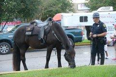 officerhorse1.jpg