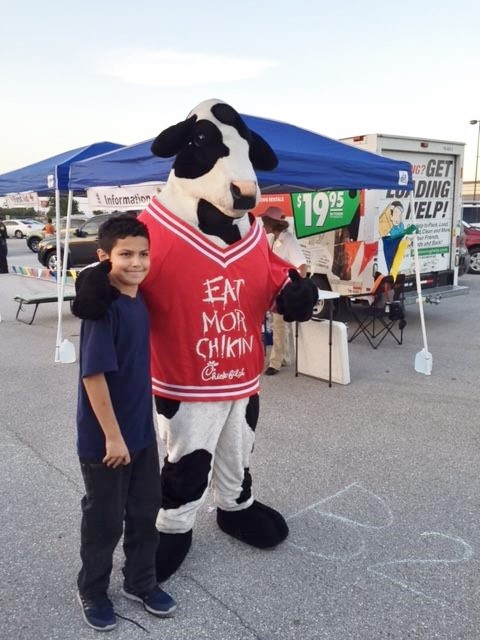 NNO 2016 Cow